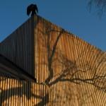 """Der """"Homunkulus-Rabe""""; Eröffnungsgeschenk des Bildhauers Jo Harbort 2014"""